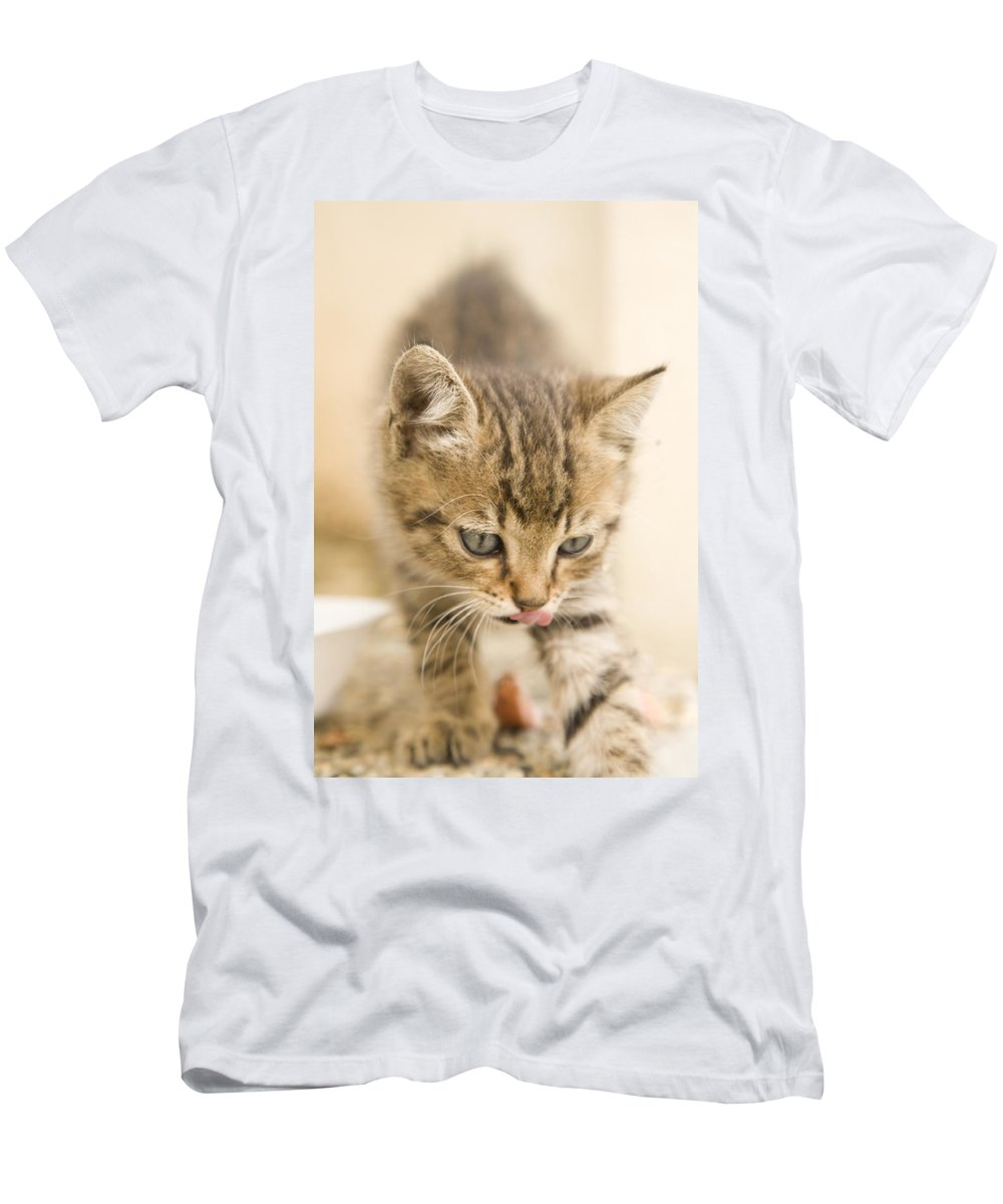 Kitten Men's T-Shirt (Athletic Fit) featuring the photograph That Was A Tasty Snack by Ian Middleton