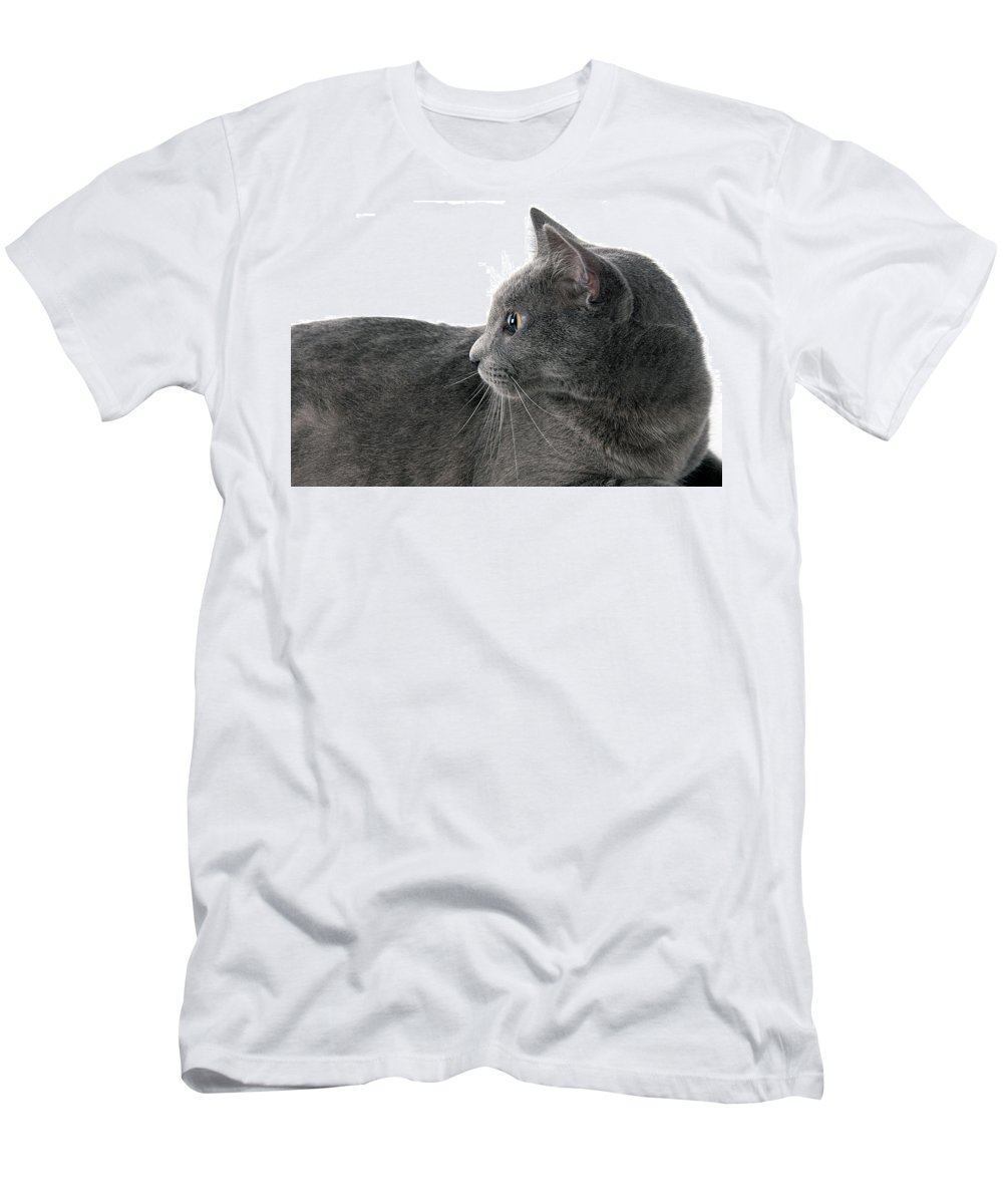 Cat Men's T-Shirt (Athletic Fit) featuring the photograph The Cat by Hugo Orantes