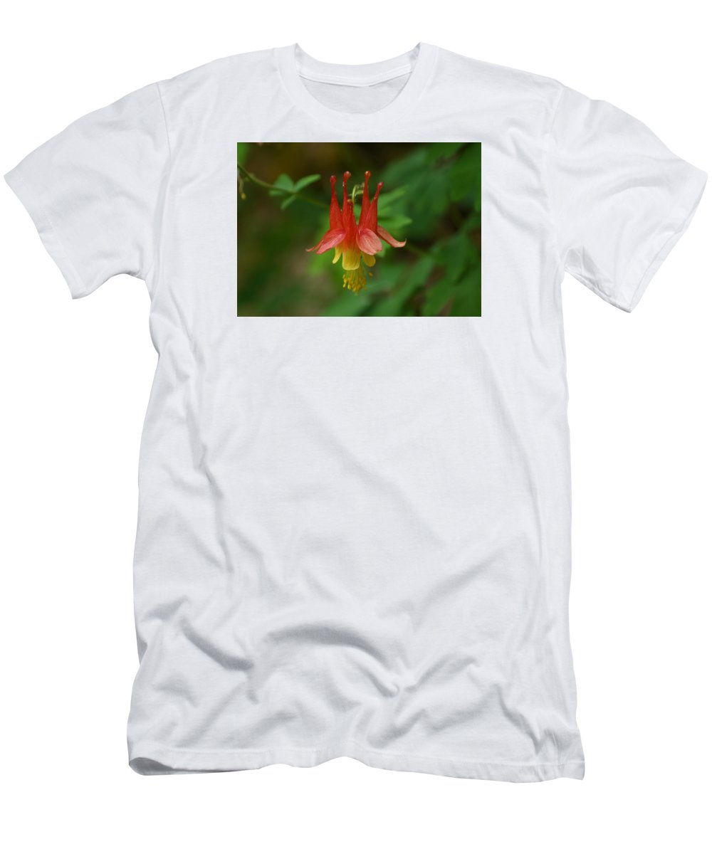 Ann Keisling Men's T-Shirt (Athletic Fit) featuring the photograph The Columbine by Ann Keisling