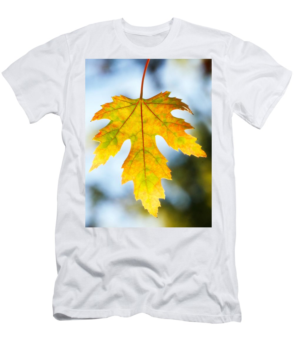 Maple Men's T-Shirt (Athletic Fit) featuring the photograph The Maple Leaf by Marilyn Hunt