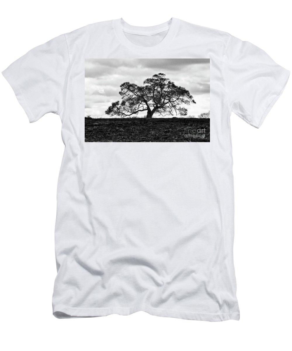 Oak Tree Men's T-Shirt (Athletic Fit) featuring the photograph Tortue Oak by Scott Pellegrin
