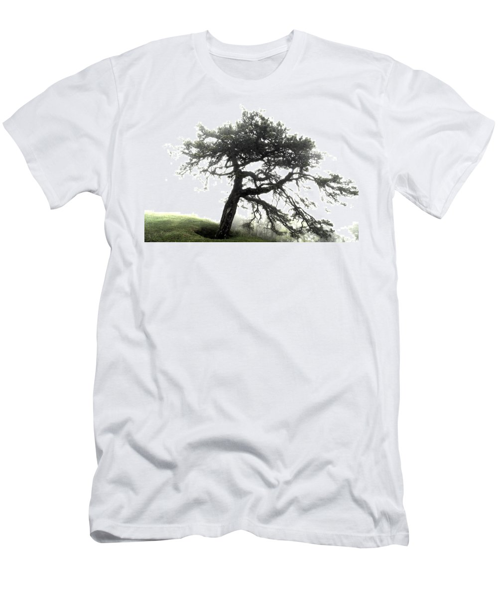 Hdr Men's T-Shirt (Athletic Fit) featuring the photograph Tree by Alex Grichenko