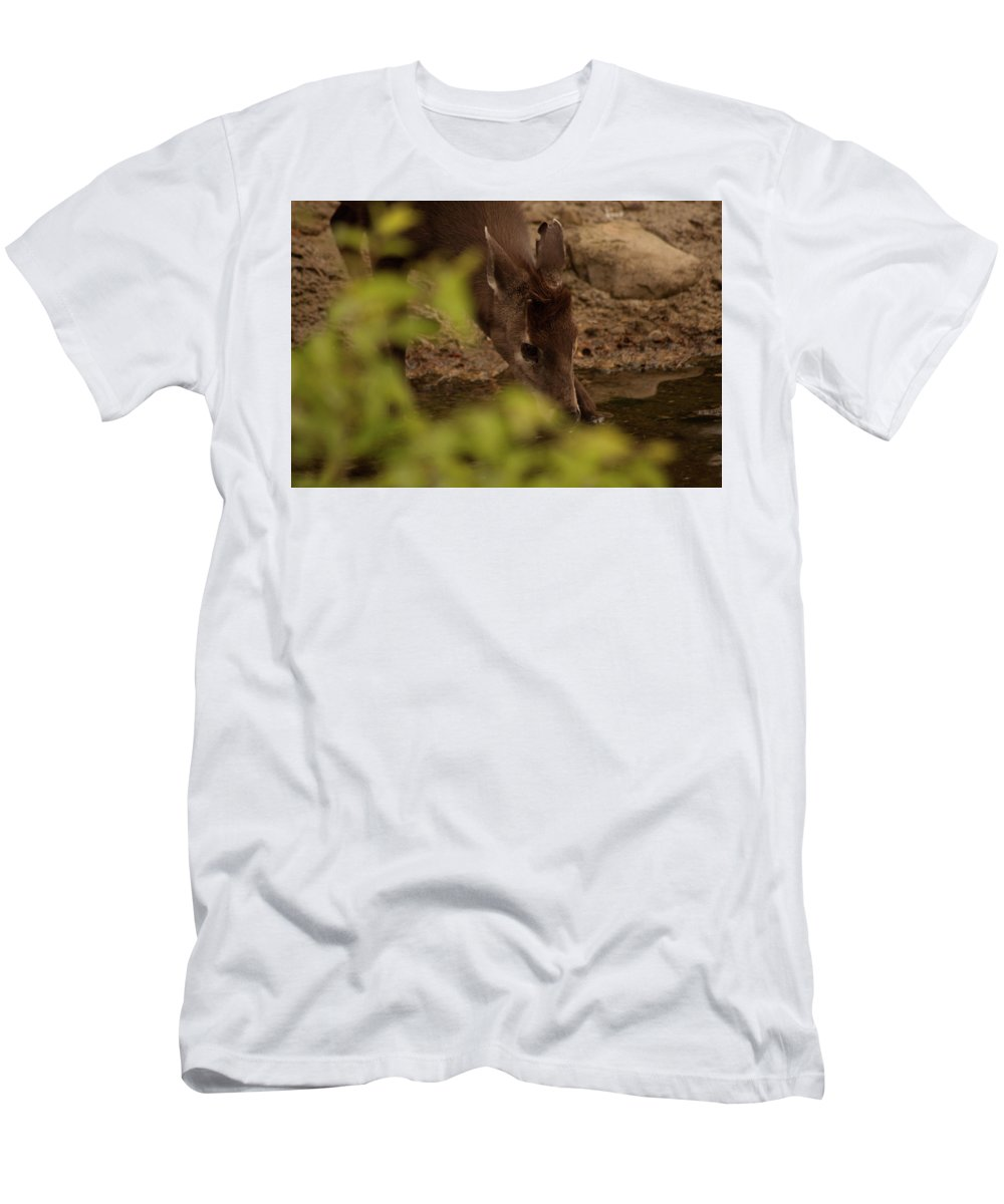 Deer Men's T-Shirt (Athletic Fit) featuring the photograph Tufted Deer by Diane Schuler