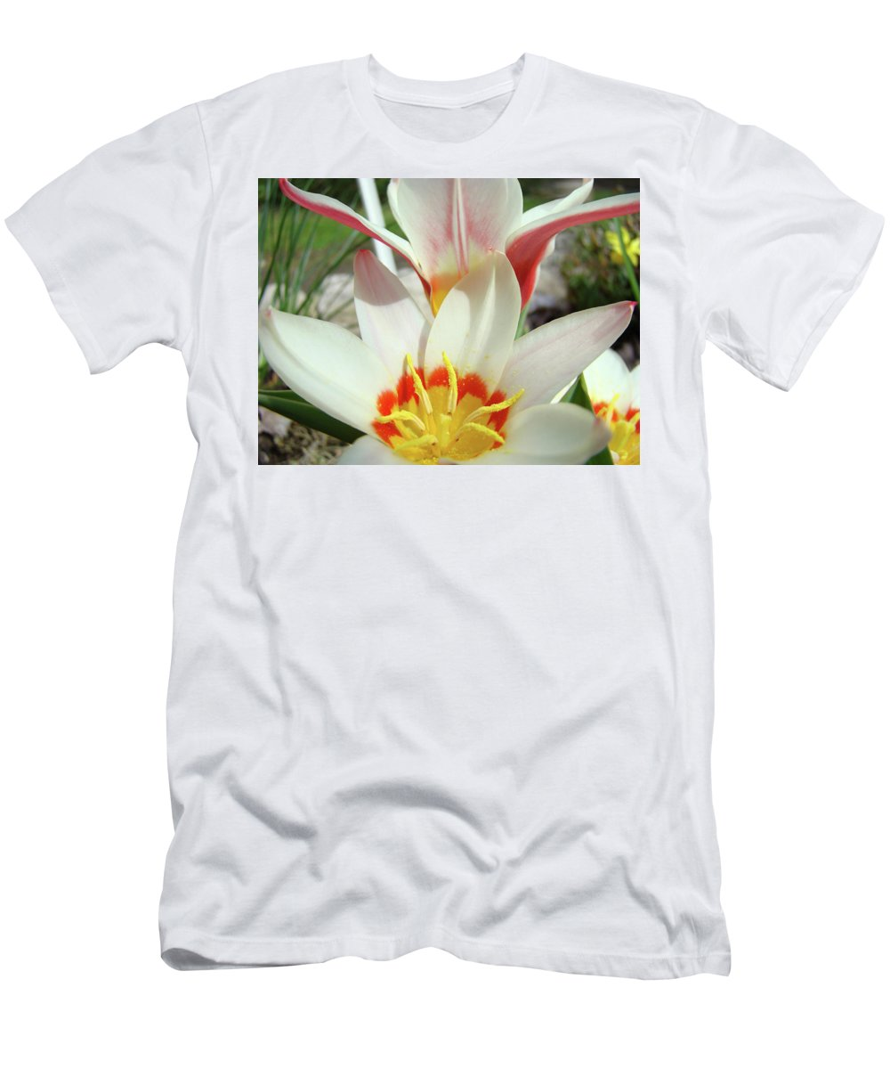 �tulips Artwork� Men's T-Shirt (Athletic Fit) featuring the photograph Tulips Flowers Artwork 1 Tulip Flower Art Prints Spring Floral Art White Tulips Garden by Baslee Troutman