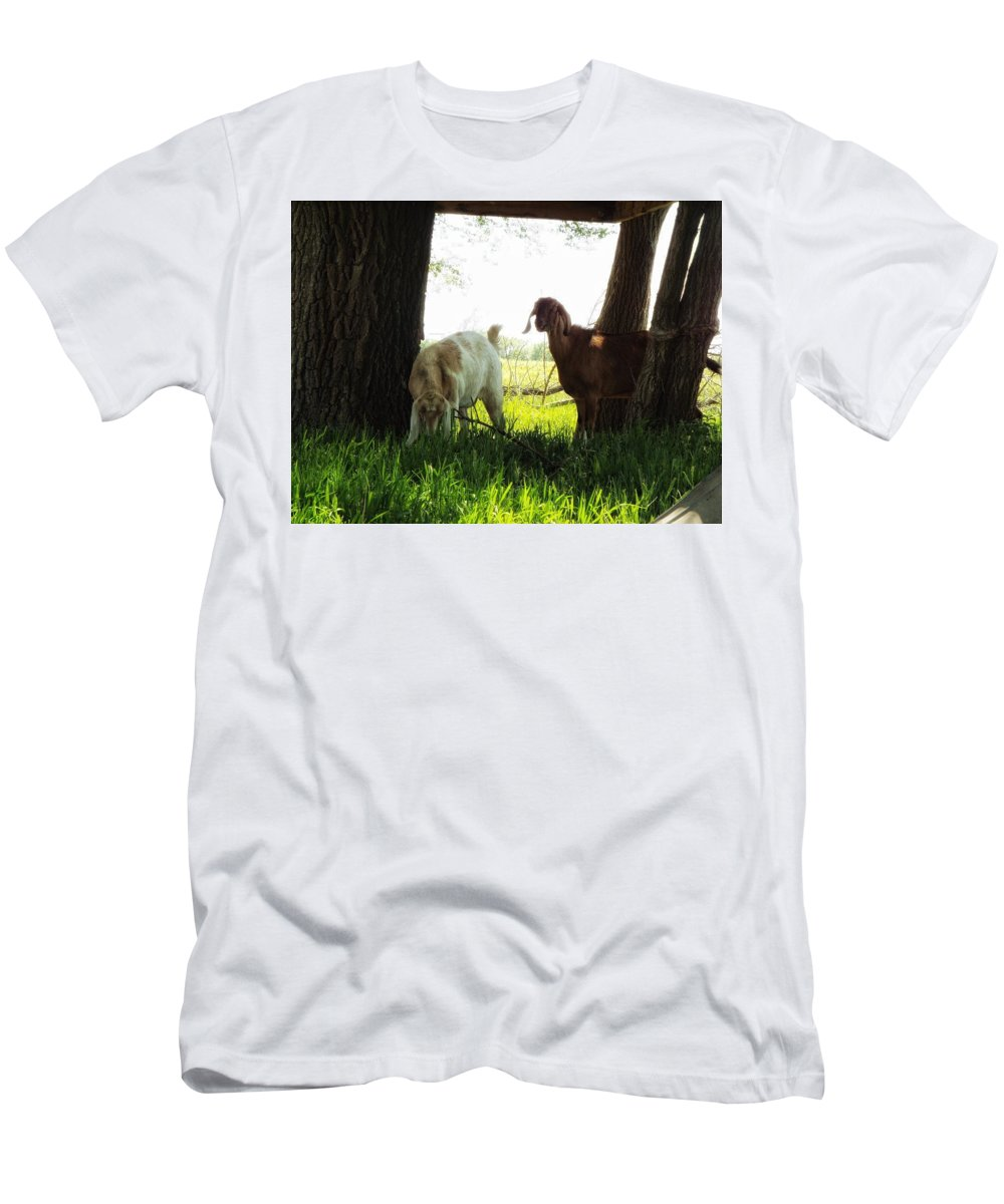 Goat Country Farm Ranch Animal Girls Men's T-Shirt (Athletic Fit) featuring the photograph Twilight On The Farm by Aaron Moore
