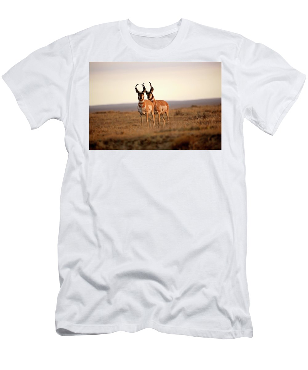 Pronghorn Antelope Men's T-Shirt (Athletic Fit) featuring the digital art Two Male Pronghorn Antelopes In Alberta by Mark Duffy