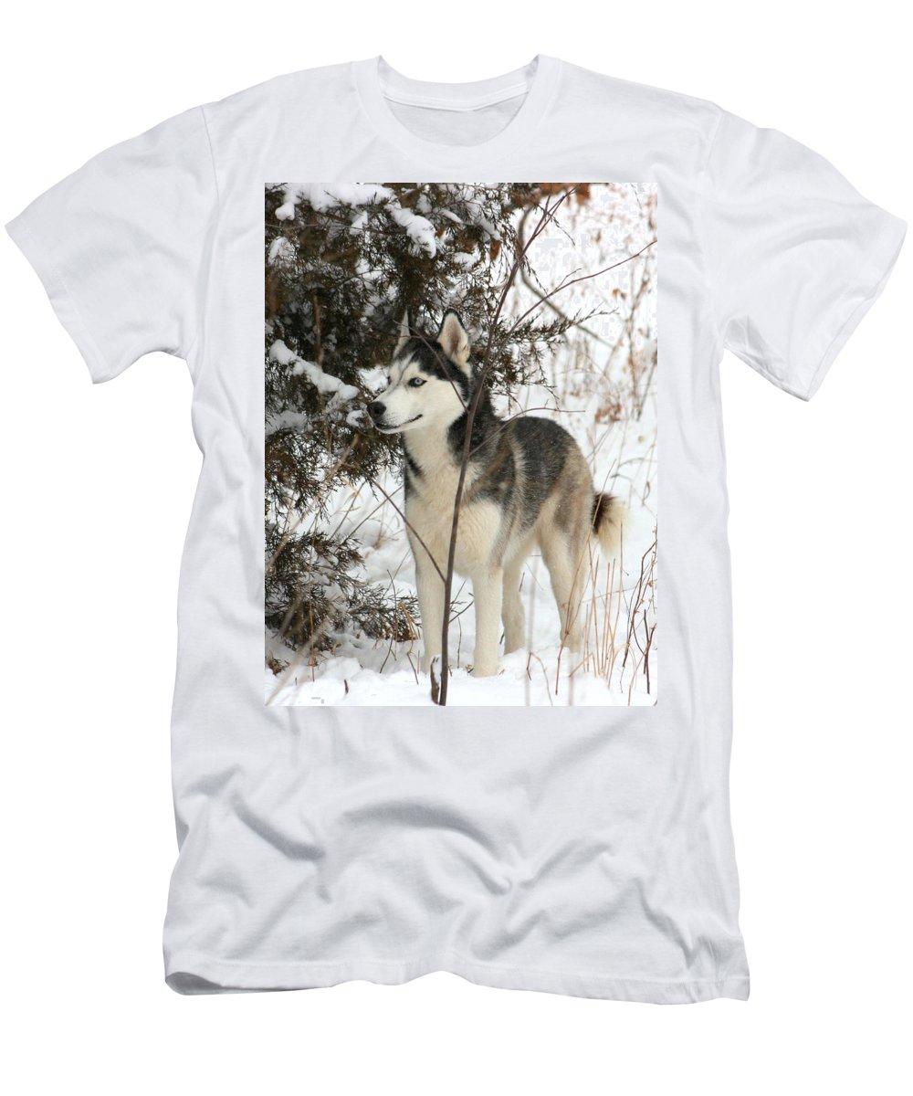 Animal Men's T-Shirt (Athletic Fit) featuring the photograph Vigilant by David Dunham