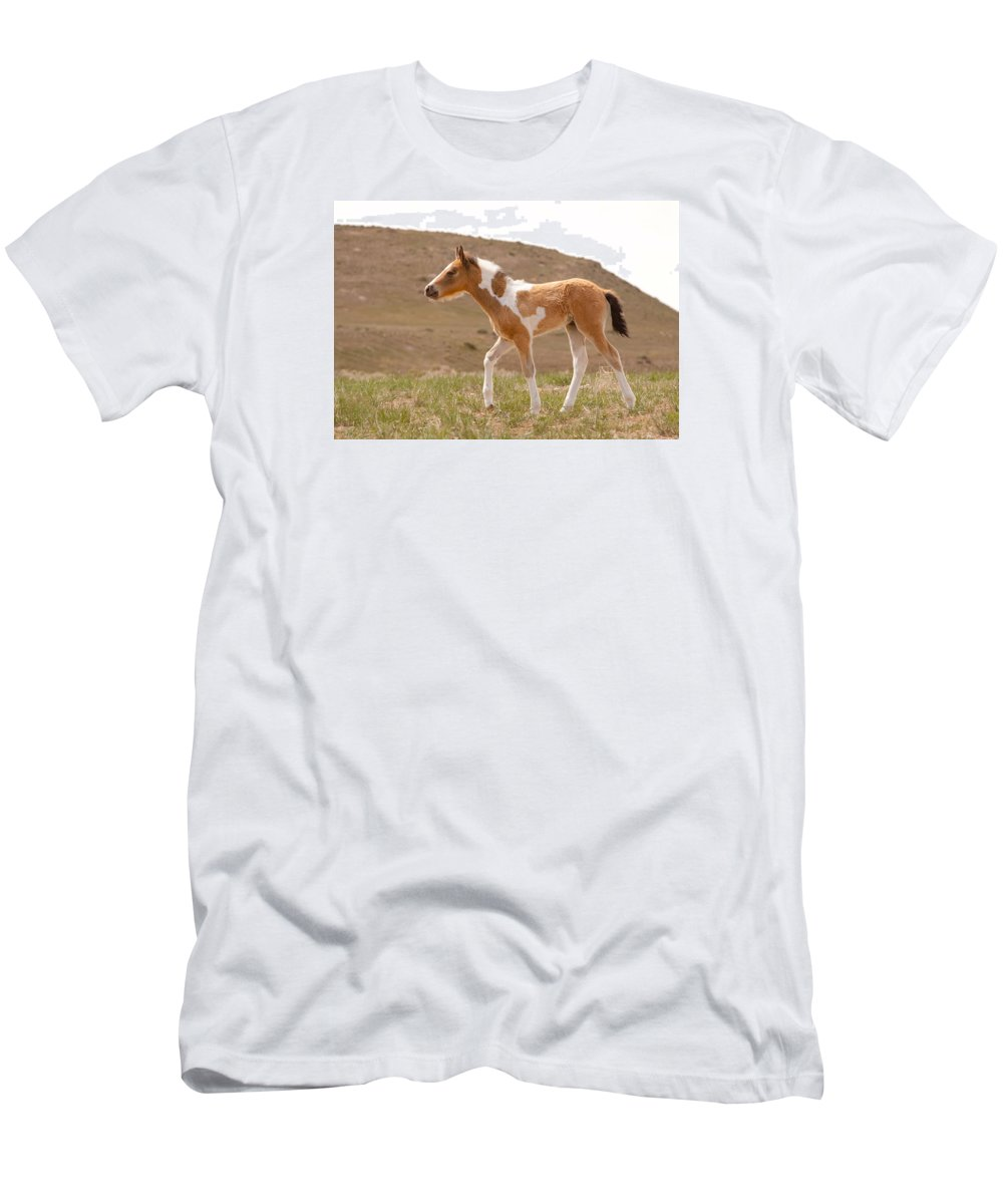 Wild Horse Men's T-Shirt (Athletic Fit) featuring the photograph Wait Up Mom by Kent Keller
