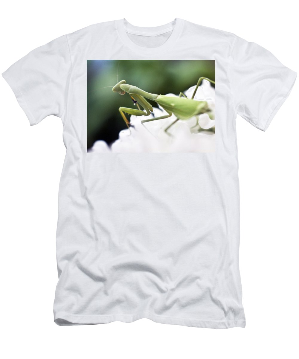 Animals Men's T-Shirt (Athletic Fit) featuring the photograph Watch Me Prey by Norman Andrus