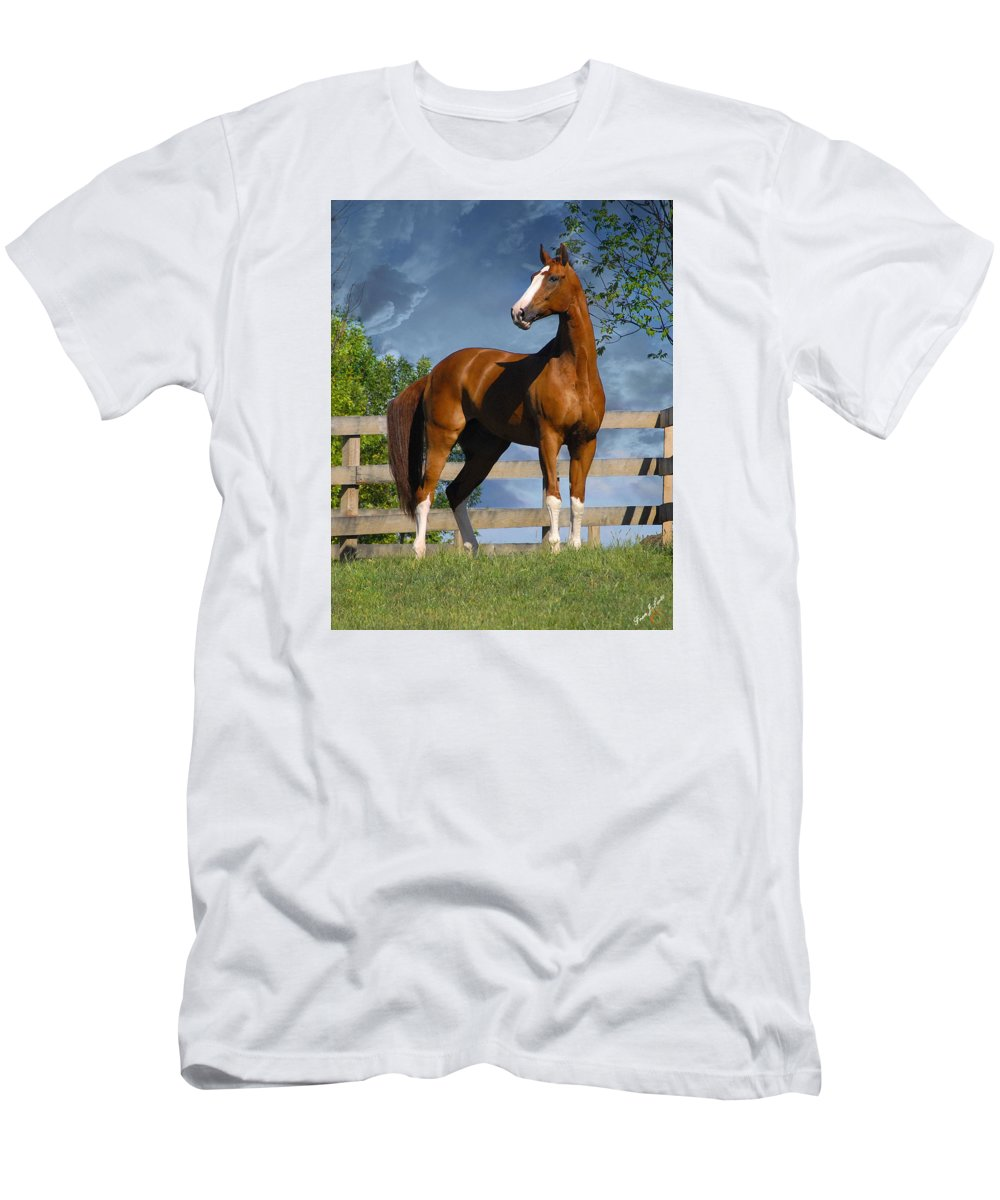 Horses T-Shirt featuring the photograph Welt Adel by Fran J Scott