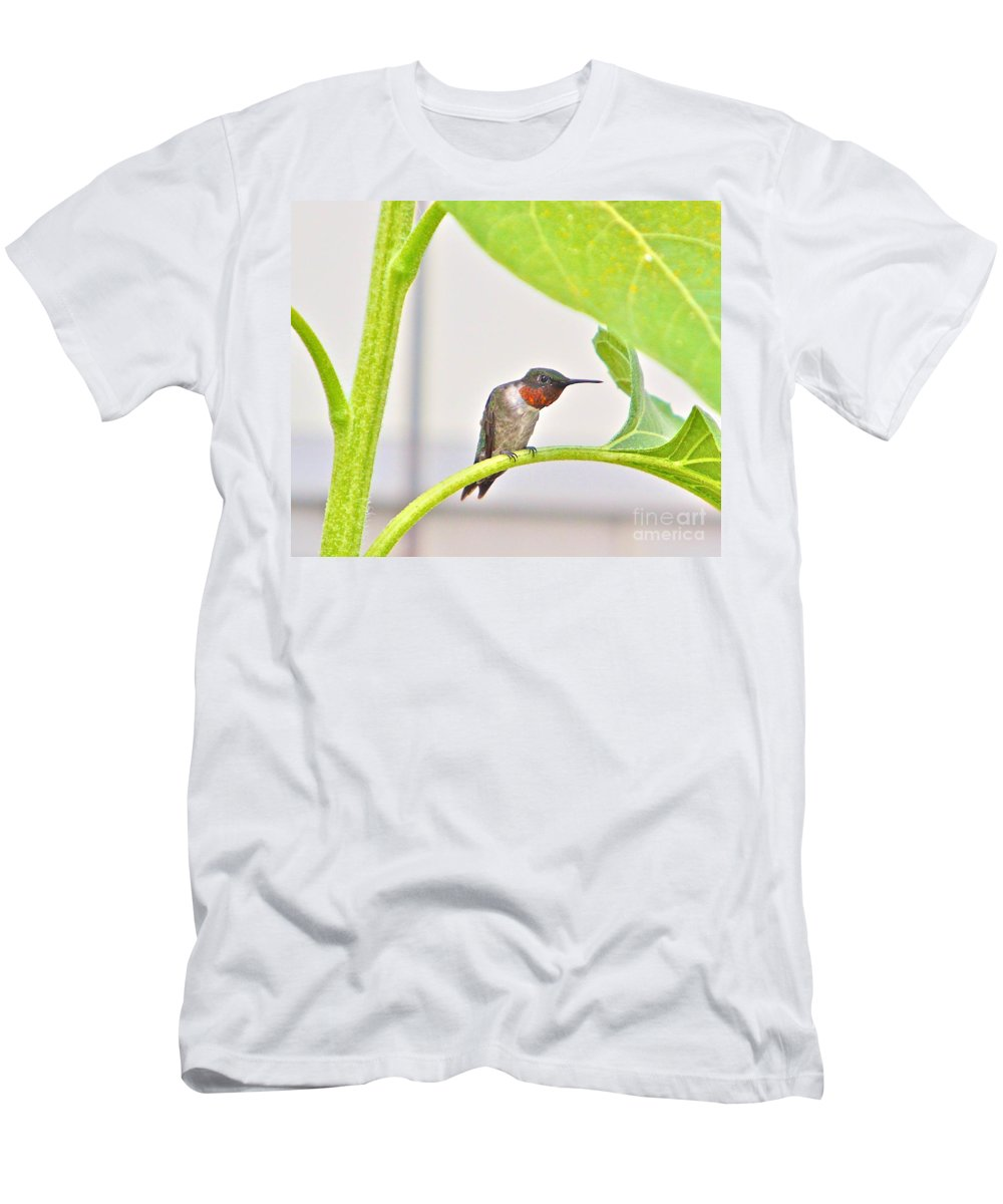 Humming Bird Men's T-Shirt (Athletic Fit) featuring the photograph What by Robert Pearson