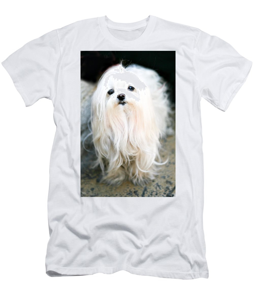 Small Men's T-Shirt (Athletic Fit) featuring the photograph White Fluff by Marilyn Hunt