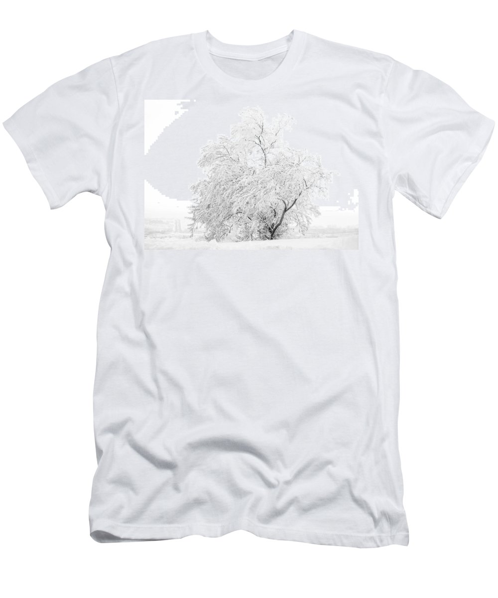 Snow Men's T-Shirt (Athletic Fit) featuring the photograph White On White by Marilyn Hunt