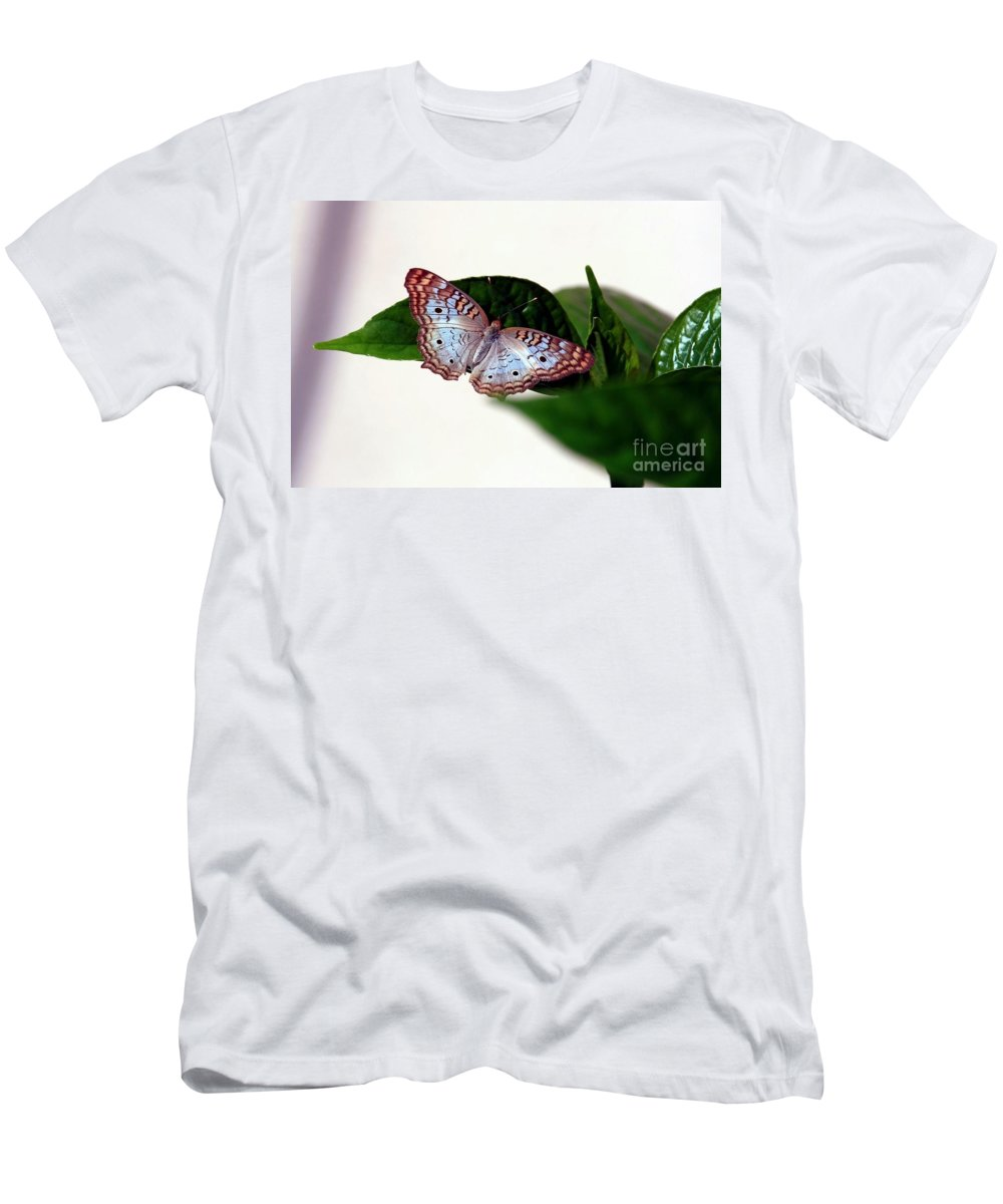 Butterfly Men's T-Shirt (Athletic Fit) featuring the photograph White Peacock Butterfly 2 by Randy Matthews