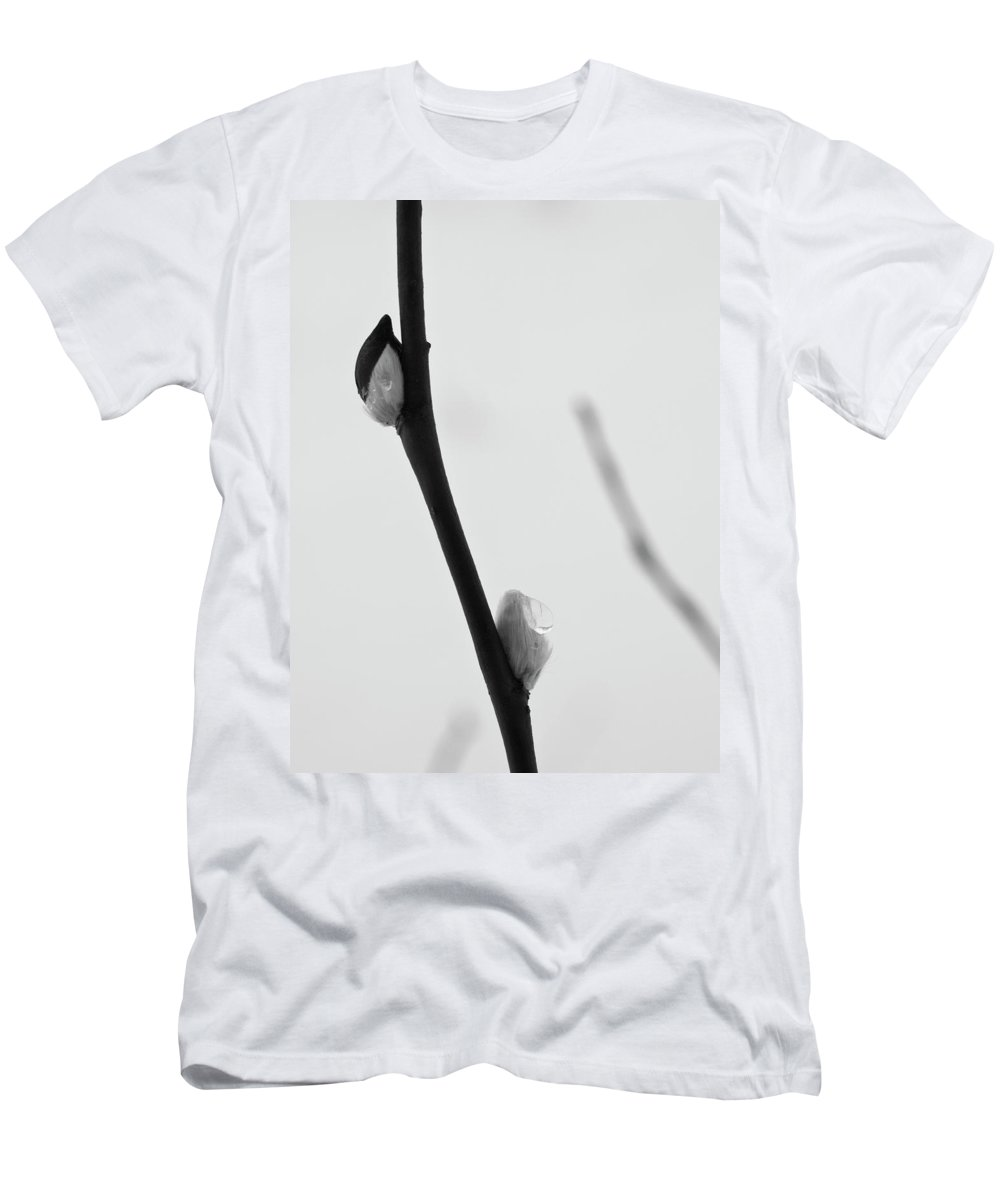 Lehtokukka Men's T-Shirt (Athletic Fit) featuring the photograph Willow Catkins 4 by Jouko Lehto