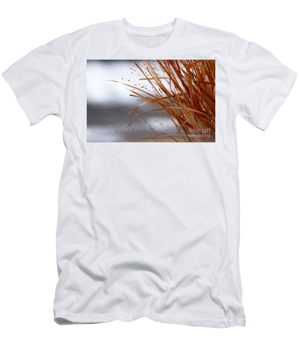 Grass Men's T-Shirt (Athletic Fit) featuring the photograph Winter Grass - 2 by Linda Shafer
