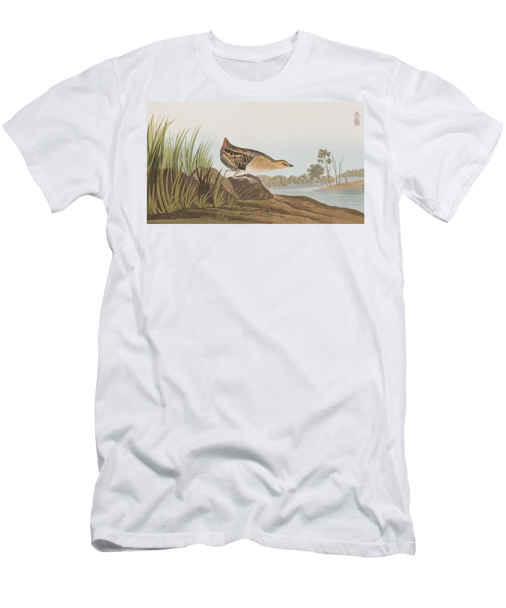 Rail Men's T-Shirt (Athletic Fit) featuring the painting Yellow-breasted Rail by John James Audubon
