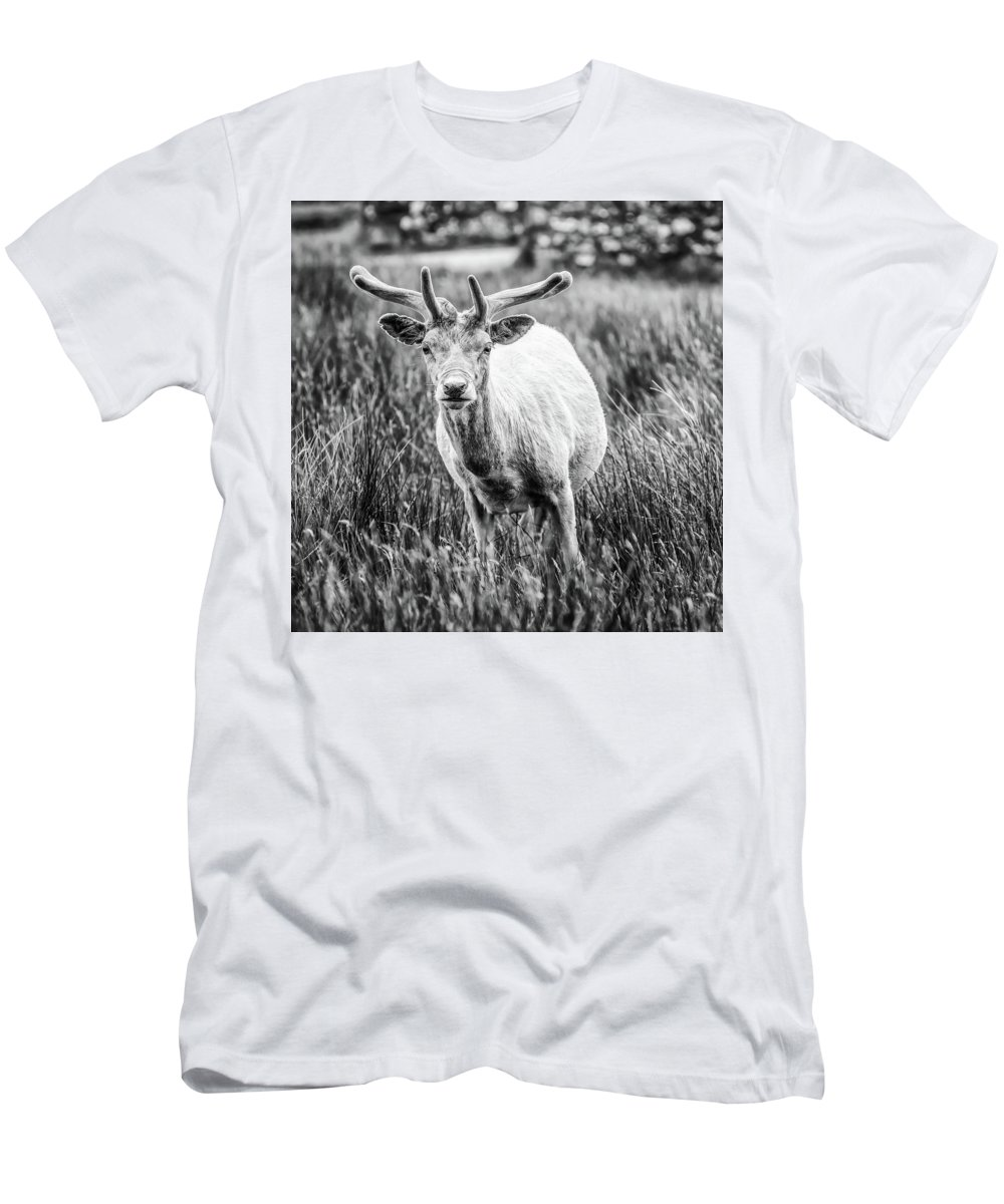 Deer Men's T-Shirt (Athletic Fit) featuring the photograph You Looking At Me? by Nick Bywater