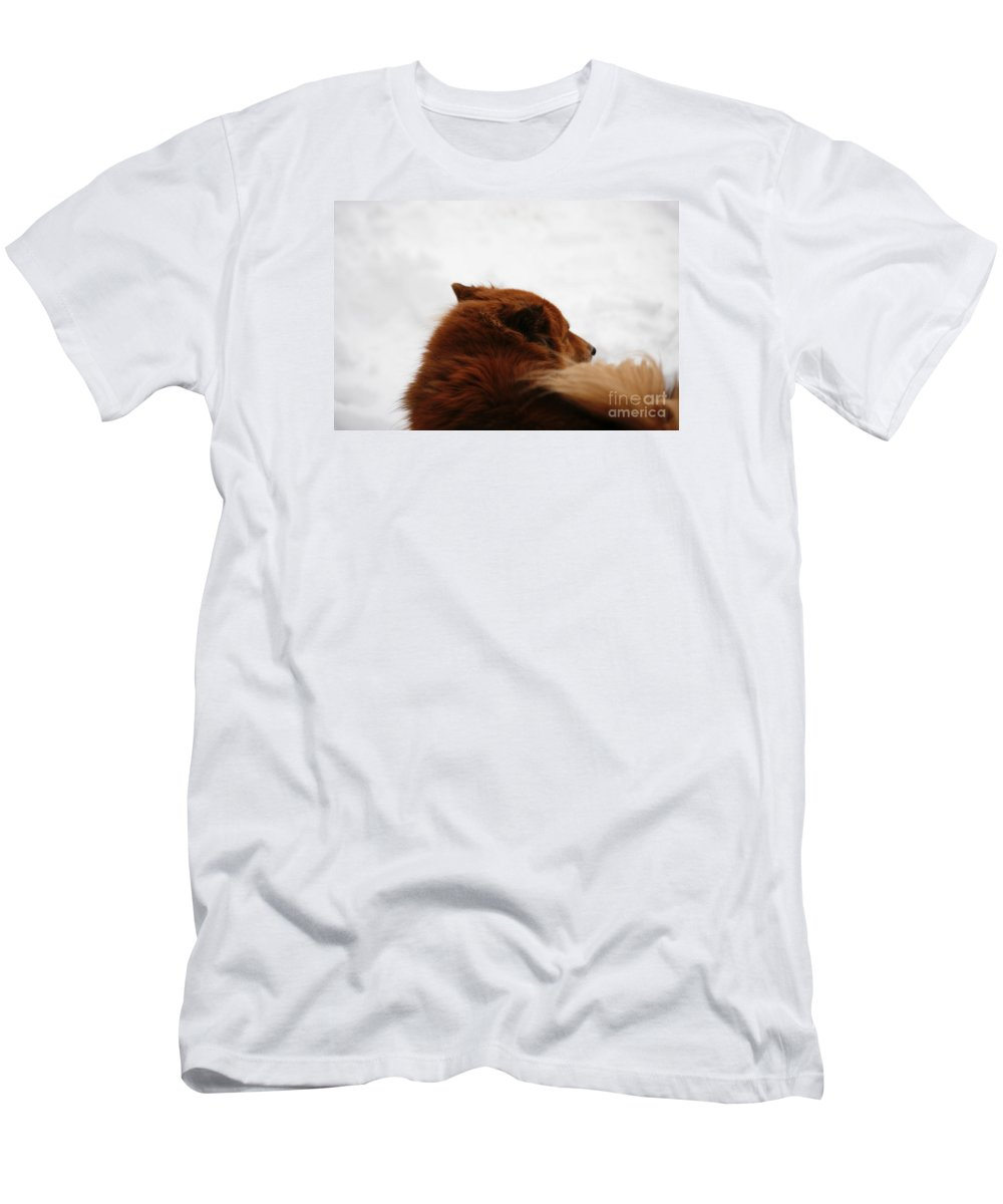 Dog Men's T-Shirt (Athletic Fit) featuring the photograph Your Spirit Remains by Linda Shafer