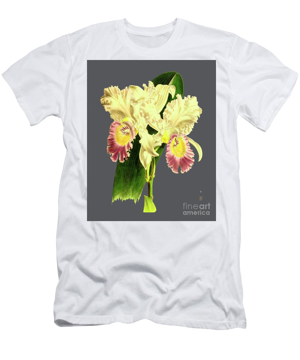 Vintage Men's T-Shirt (Athletic Fit) featuring the digital art Orchid Old Print by Baptiste Posters