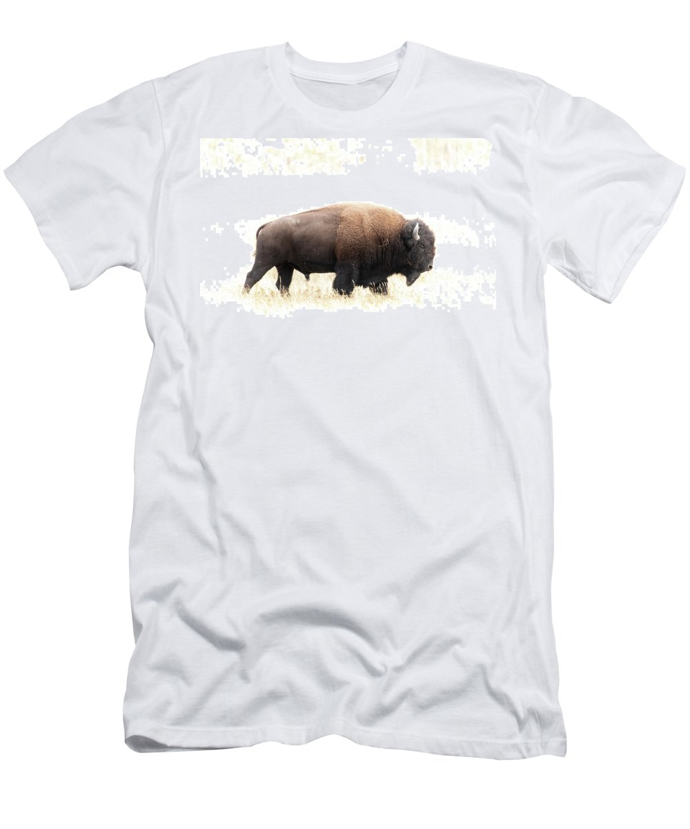 North America Men's T-Shirt (Athletic Fit) featuring the photograph Bison by Christian Heeb