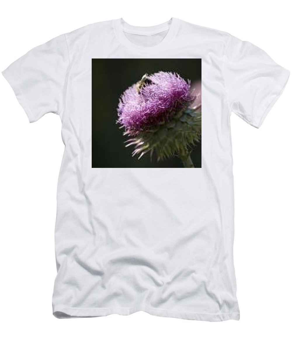 Bee Men's T-Shirt (Athletic Fit) featuring the photograph Bee On Thistle by Nancy Ayanna Wyatt
