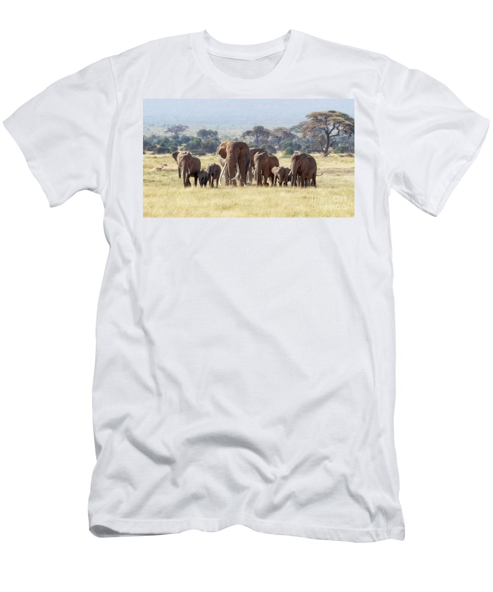 Elephant Men's T-Shirt (Athletic Fit) featuring the photograph Bull Elephant With A Herd Of Females And Babies In Amboseli, Kenya by Jane Rix