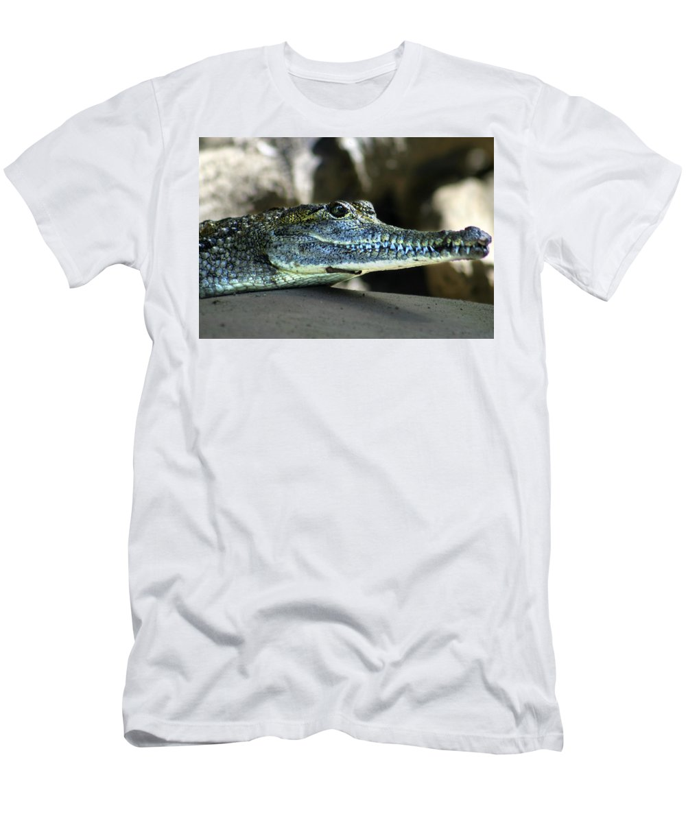 American Crocodile T-Shirt featuring the photograph Crocodile by Anthony Jones
