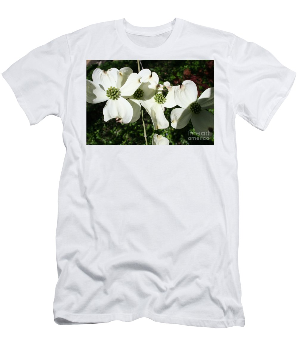 Highland Productions Llc  Darren Dwayne Frazier  White Petals Dogwood  Green Back Ground  Sunny Day Men's T-Shirt (Athletic Fit) featuring the photograph Dogwood V 2019 by Darren Dwayne Frazier