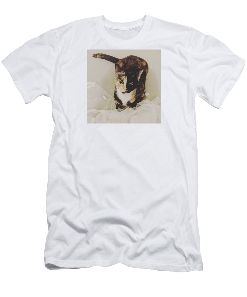 Cute Cat Men's T-Shirt (Athletic Fit) featuring the photograph Meet Star by Star And Ray