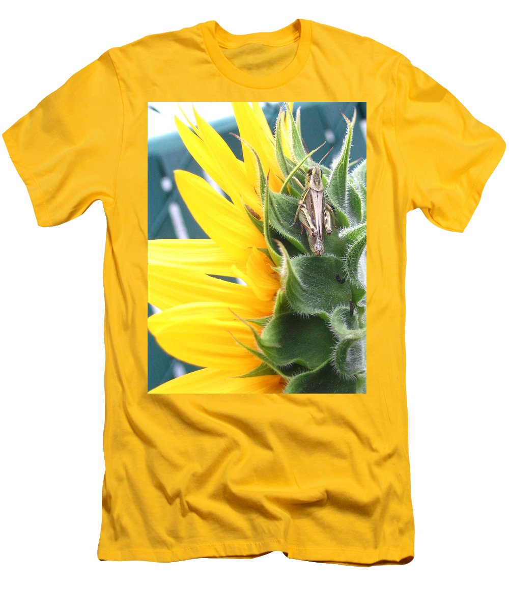 Sunflower Men's T-Shirt (Athletic Fit) featuring the photograph ... Small Break by Line Gagne
