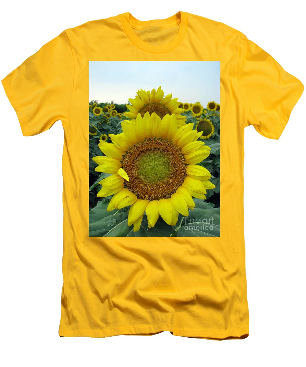 Sunflowers Men's T-Shirt (Athletic Fit) featuring the photograph Sunflowers by Amanda Barcon