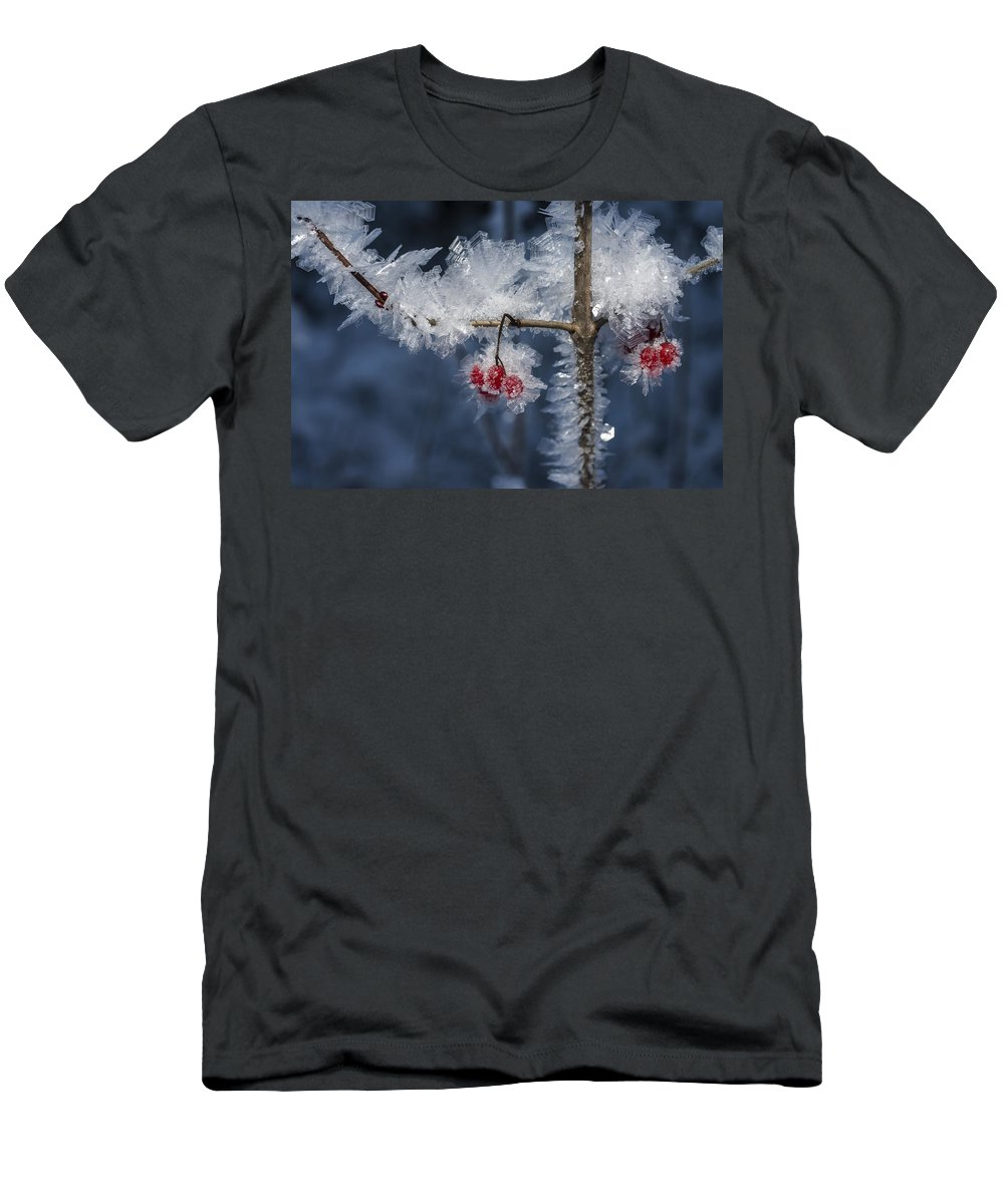 Ice Men's T-Shirt (Athletic Fit) featuring the photograph Absolute Zero by Ted Raynor