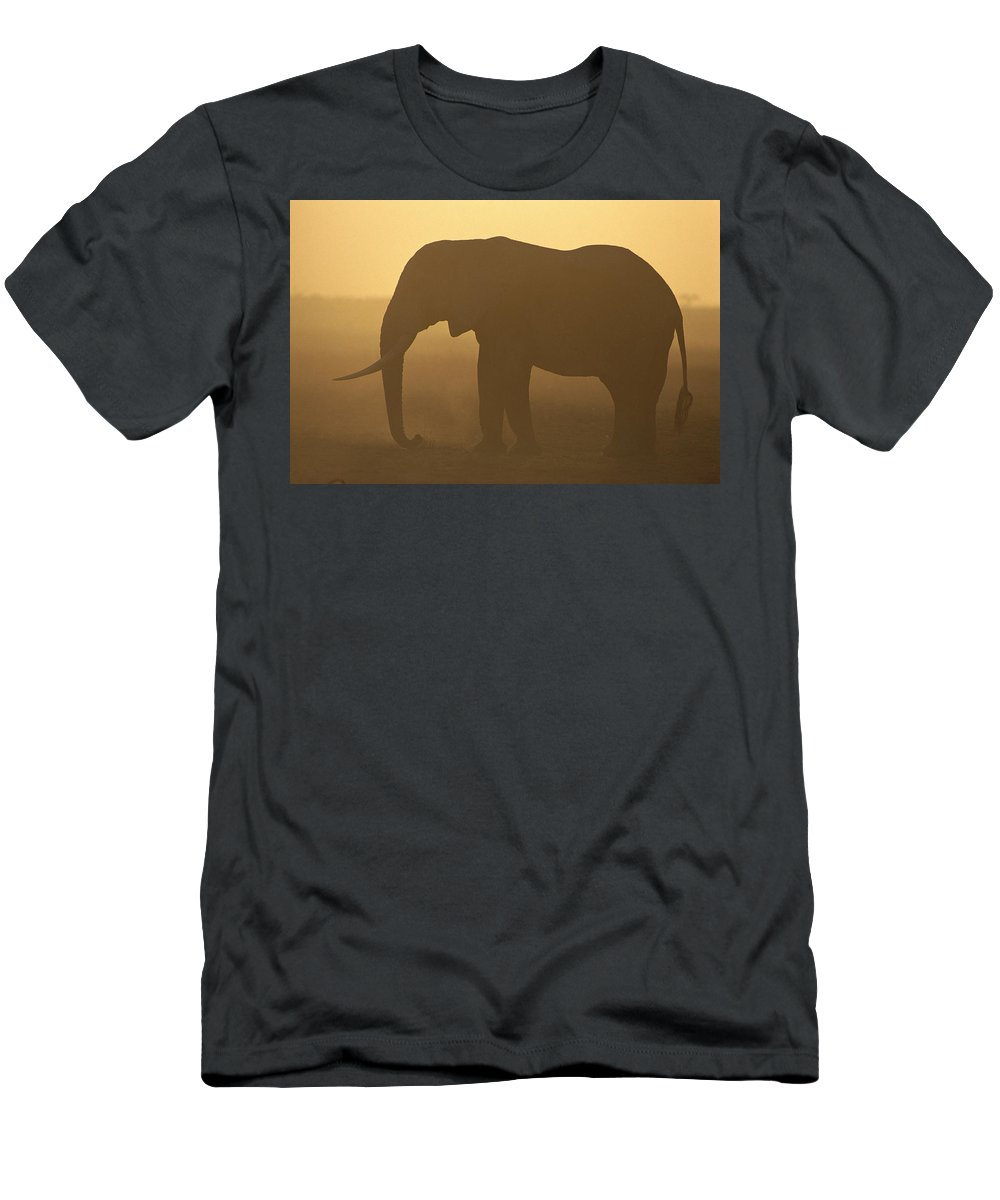 Feb0514 Men's T-Shirt (Athletic Fit) featuring the photograph African Elephant At Sunset Amboseli by Gerry Ellis
