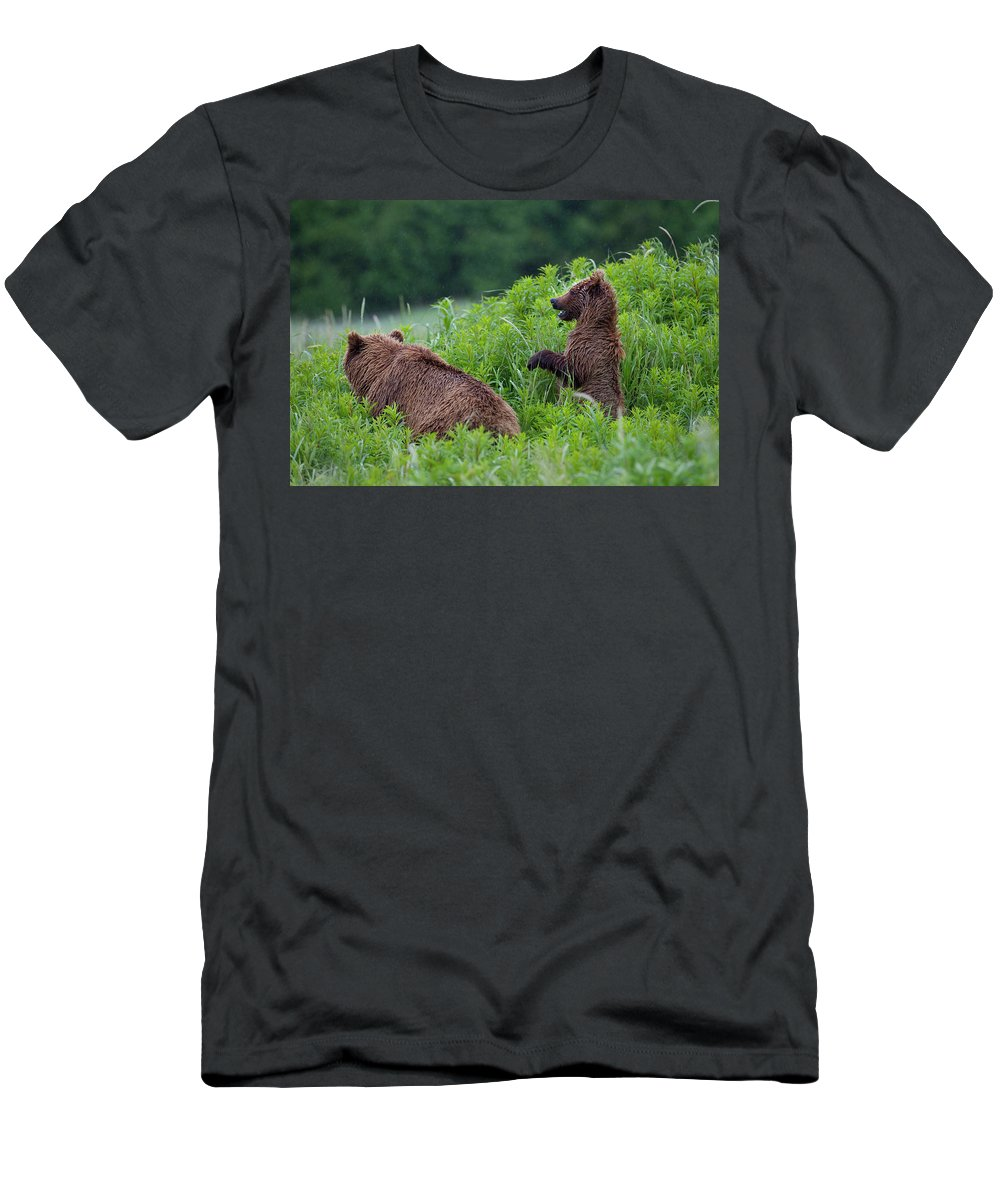 Alaska Men's T-Shirt (Athletic Fit) featuring the photograph Alaska2010.-brown Beers On The Kenai by Tom Lynn