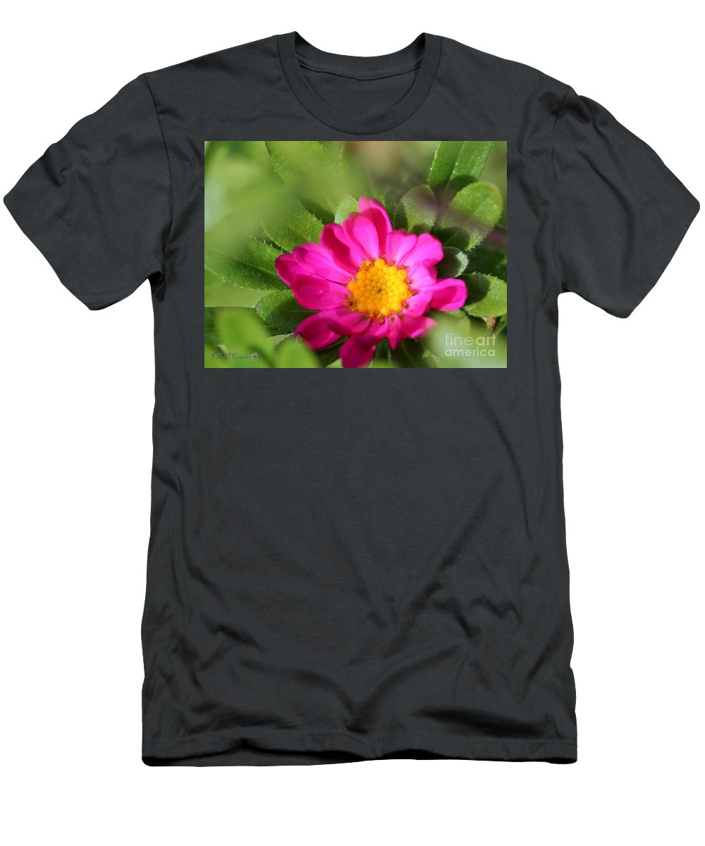 Mccombie Men's T-Shirt (Athletic Fit) featuring the photograph Aster From The Daylight Mix by J McCombie