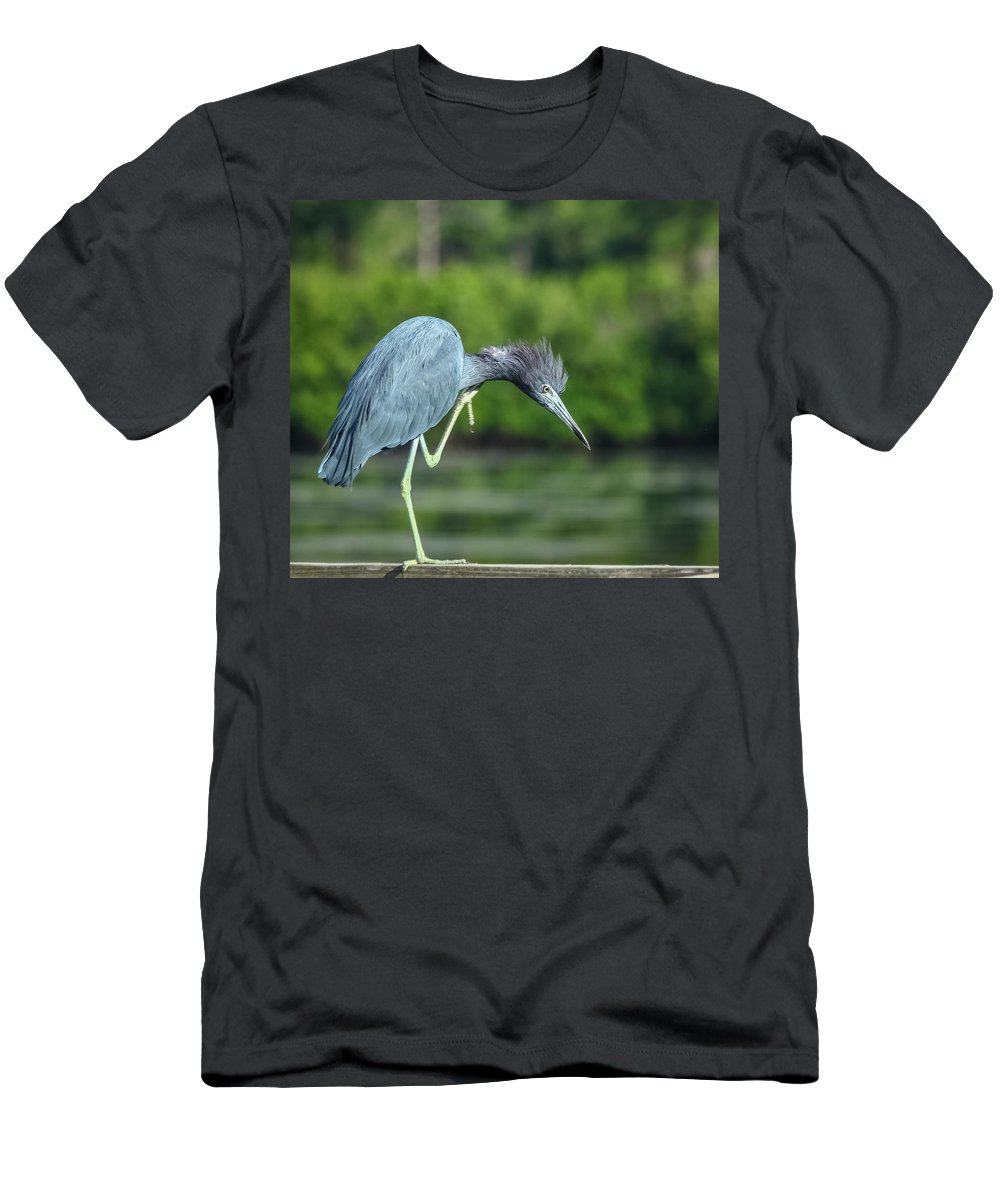 Florida Men's T-Shirt (Athletic Fit) featuring the photograph Bad Hair Day by Jane Luxton