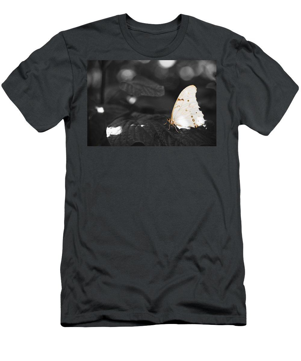 Florida Men's T-Shirt (Athletic Fit) featuring the photograph Butterfly by Bradley R Youngberg