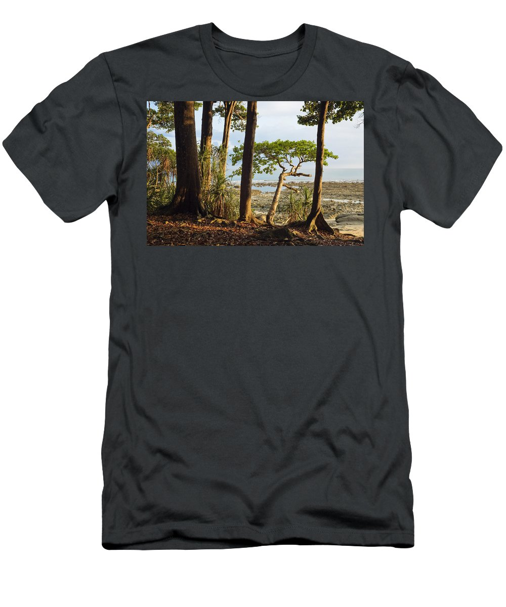 Feb0514 Men's T-Shirt (Athletic Fit) featuring the photograph Coastal Rainforest Havelock Isl India by Konrad Wothe