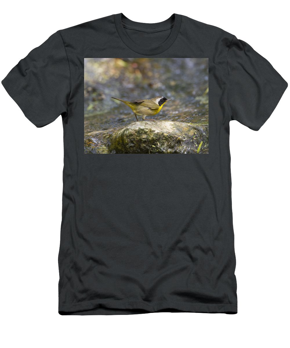 Doug Lloyd Men's T-Shirt (Athletic Fit) featuring the photograph Common Yellowthroat by Doug Lloyd
