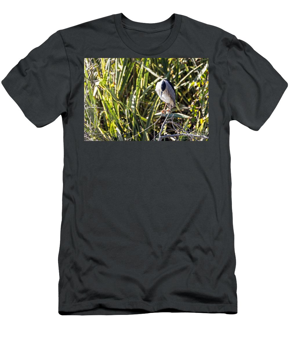 Bird Men's T-Shirt (Athletic Fit) featuring the photograph Contemplation by Kate Brown