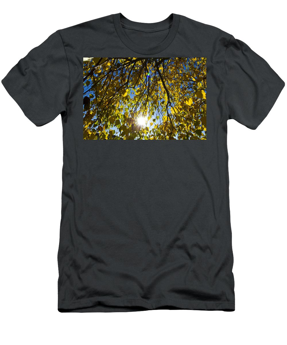 Autumn Men's T-Shirt (Athletic Fit) featuring the photograph Early Autumn by David Pyatt