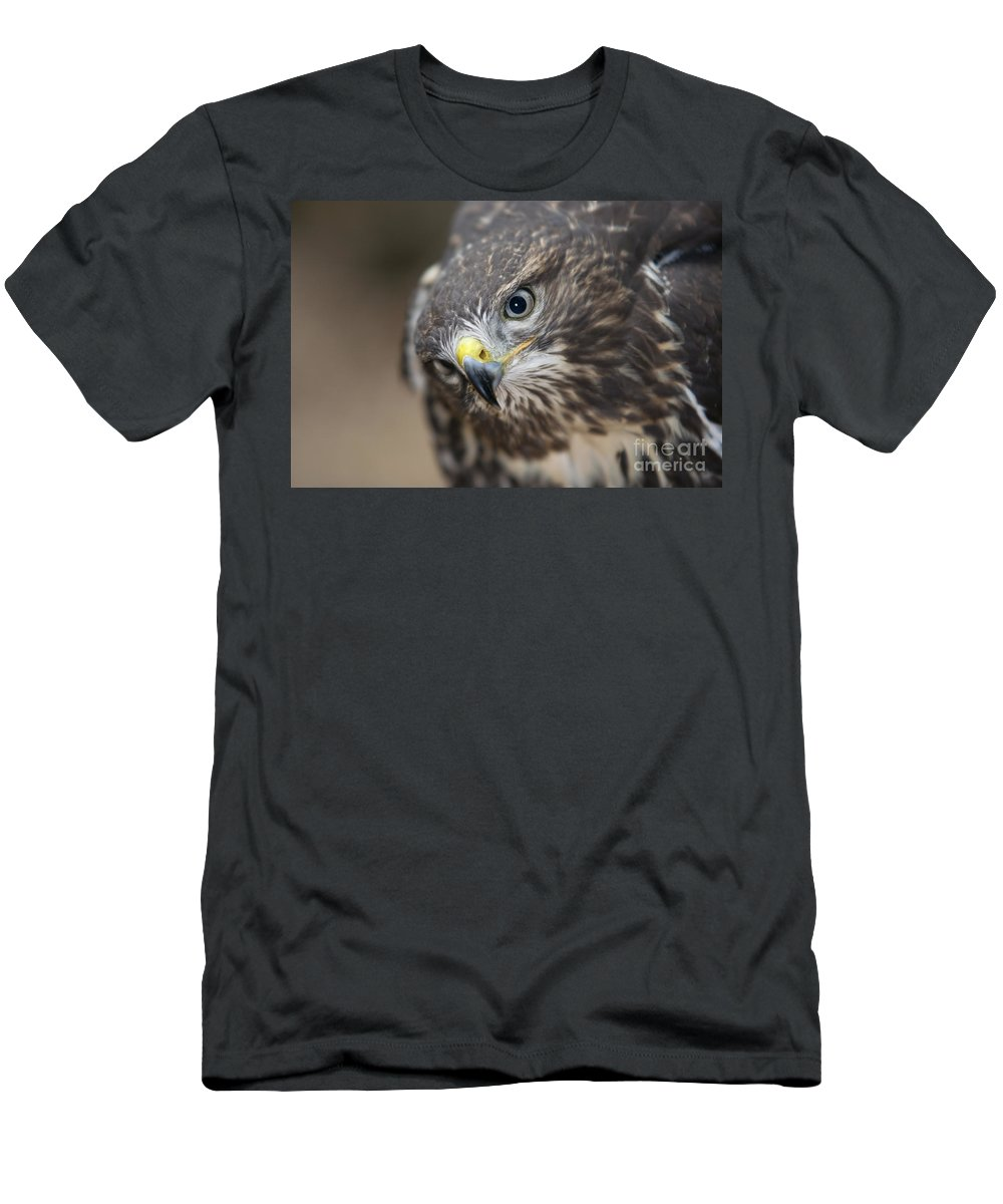 Buzzard Men's T-Shirt (Athletic Fit) featuring the photograph eye by Michal Boubin