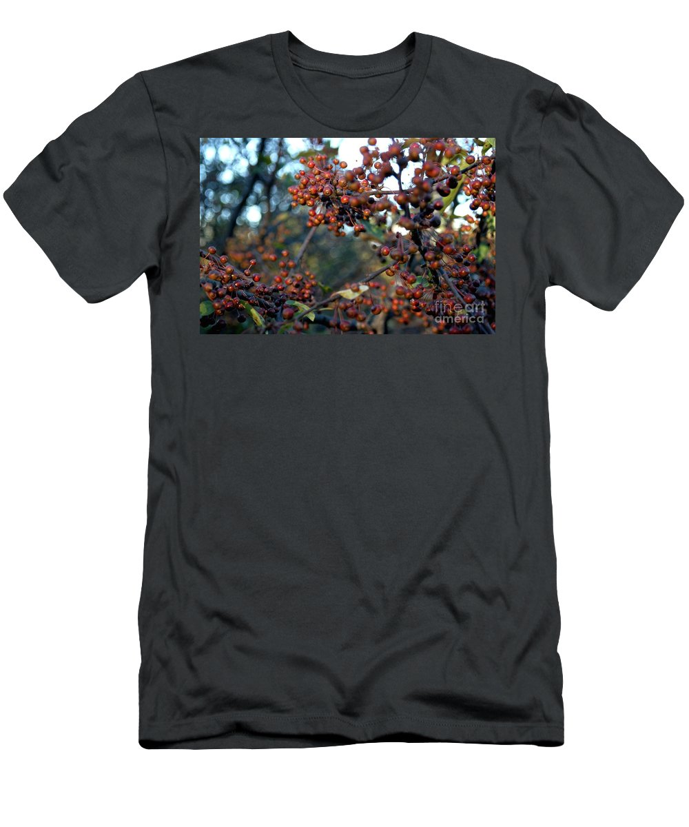 Berries Men's T-Shirt (Athletic Fit) featuring the photograph Fall Fruit by Joseph Yarbrough