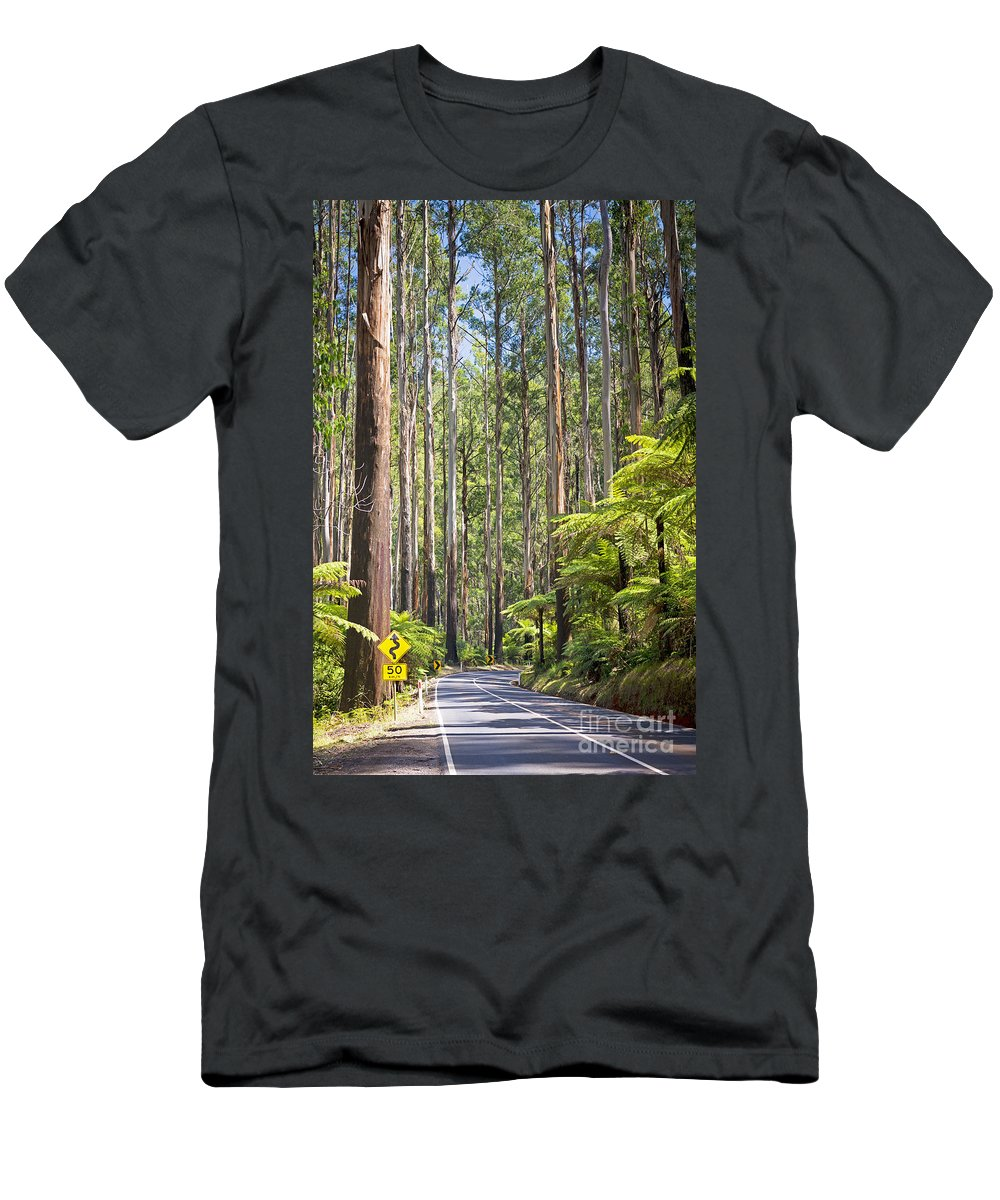 Black Men's T-Shirt (Athletic Fit) featuring the photograph Forest Road by Tim Hester