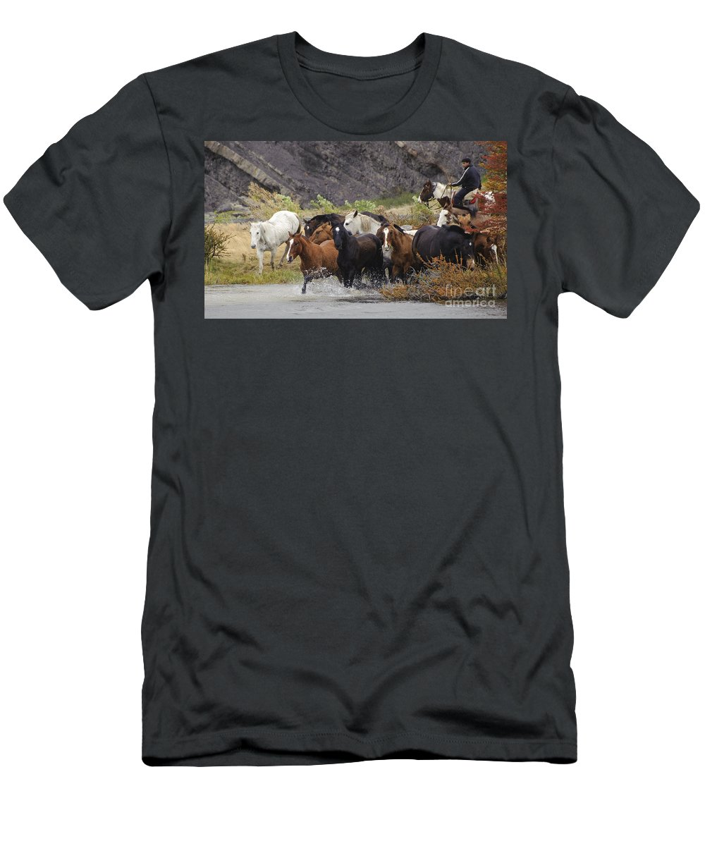 Horse Men's T-Shirt (Athletic Fit) featuring the photograph Gaucho With Herd Of Horses by John Shaw