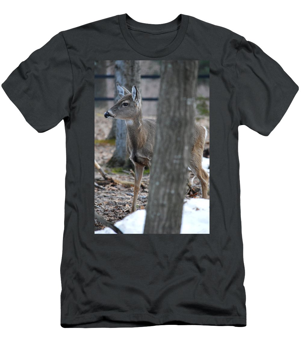 Whitetail Men's T-Shirt (Athletic Fit) featuring the photograph Hiding by Linda Kerkau