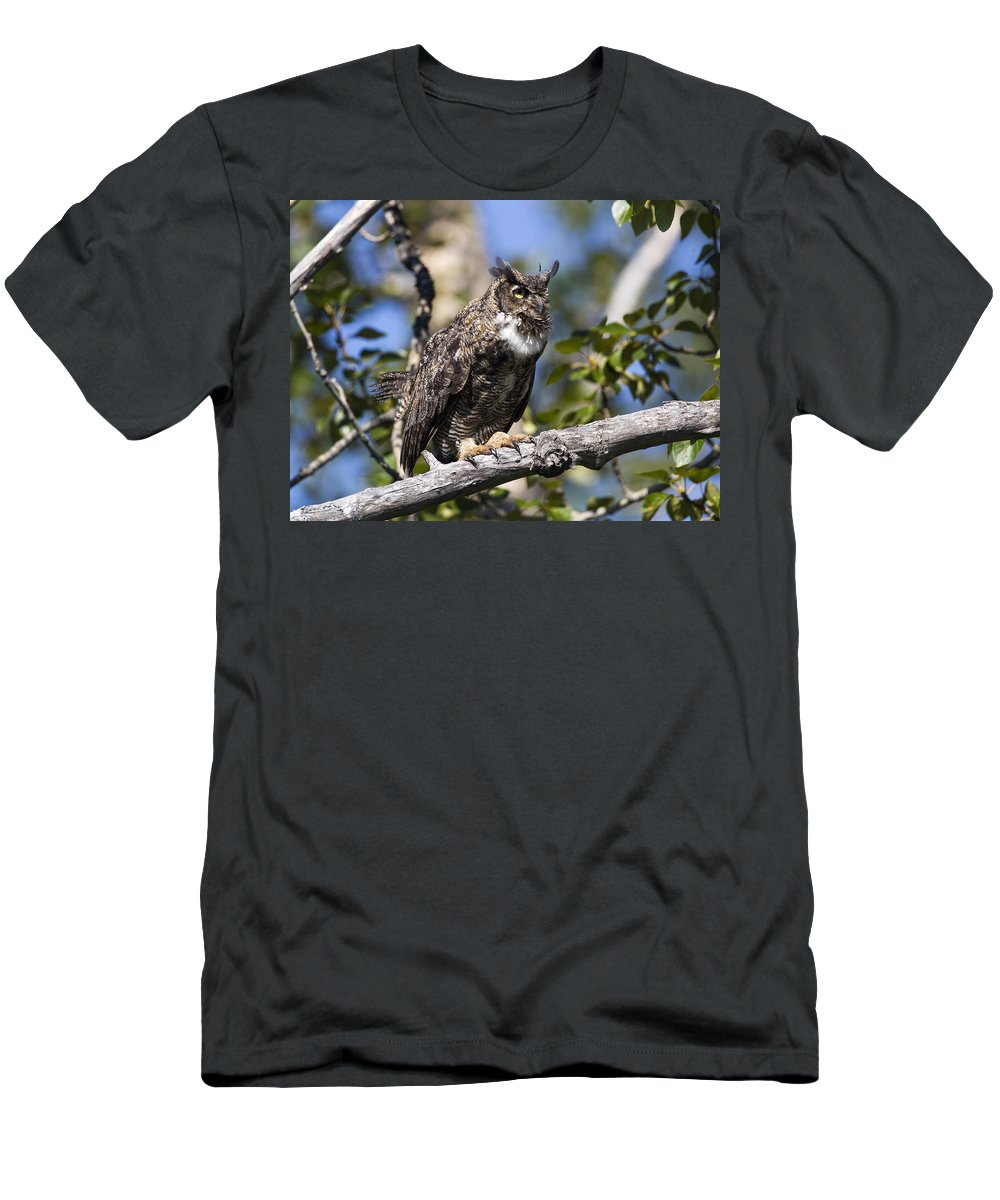 Doug Lloyd Men's T-Shirt (Athletic Fit) featuring the photograph Hoot Hoot by Doug Lloyd