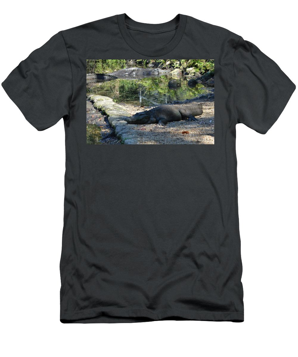 Alligator Men's T-Shirt (Athletic Fit) featuring the photograph Hungry Gator by Linda Kerkau