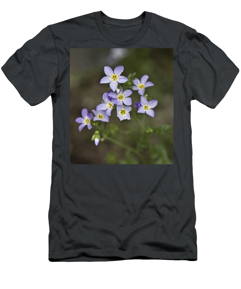Forget-me-not Men's T-Shirt (Athletic Fit) featuring the photograph Jacob's Ladder by Dee Carpenter